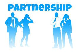 Professional Partners